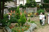 地域の公園の美緑化 (芦屋市)