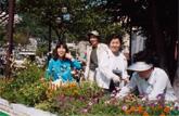 沿道の緑化 (神戸市須磨区)