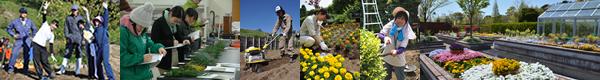 分区画でも実習風景、針葉樹の同定、土壌を学ぶ、花壇の実習風景、園芸療法ガーデン