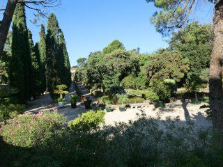 フランス最古の植物園であるモンペリエ大学植物園