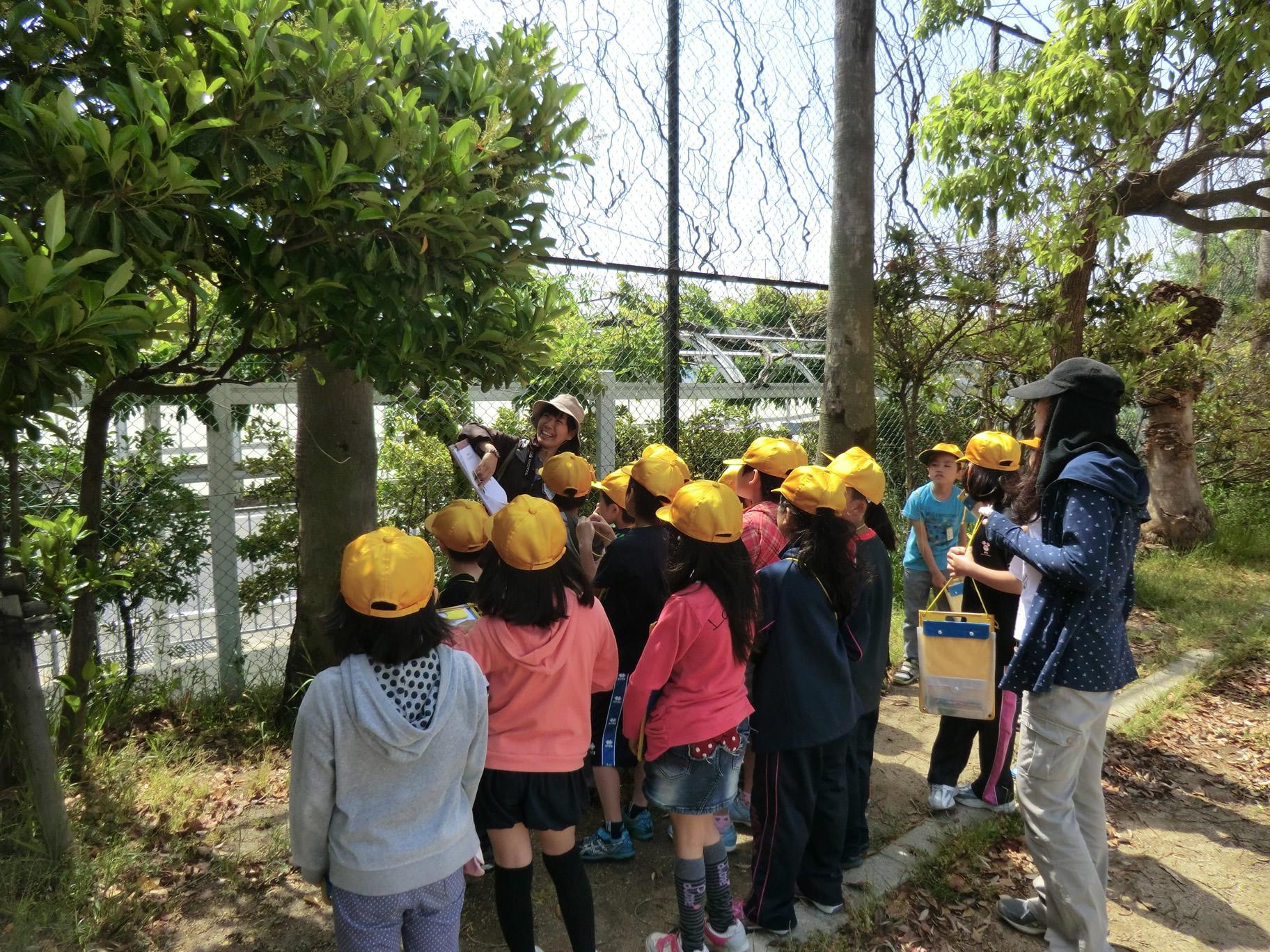 環境教育・環境学習