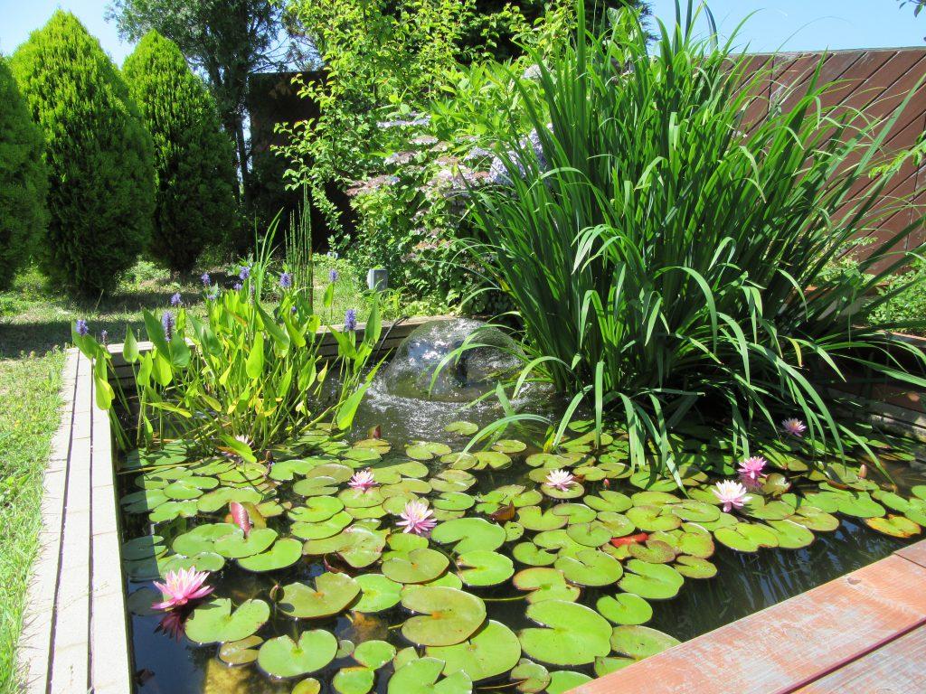 園芸療法ガーデン