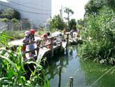 ビオトープづくりと 環境教育(神戸市垂水区)