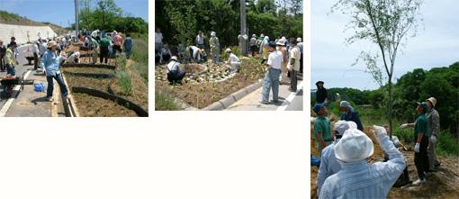 実際の公共施設用地内にフィールドを設定して行う緑地施工実習