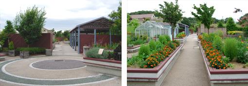 園芸療法ガーデン2