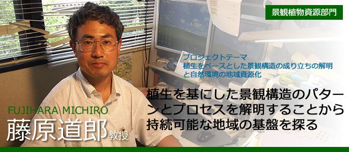 藤原 道郎 FUJIHARA MICHIRO 景観植物資源部門・教授